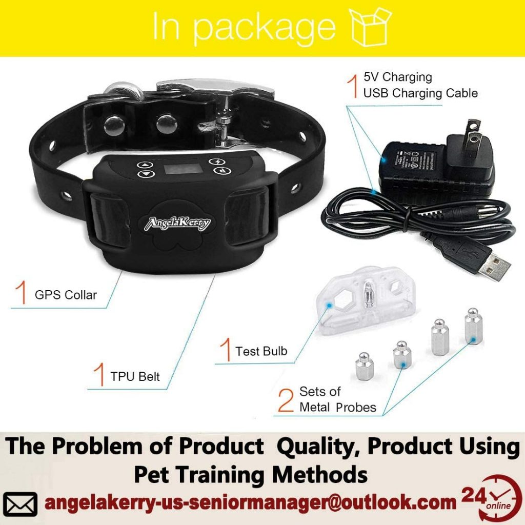 Angela Kerry Wireless Dog Fence with GPS Collar