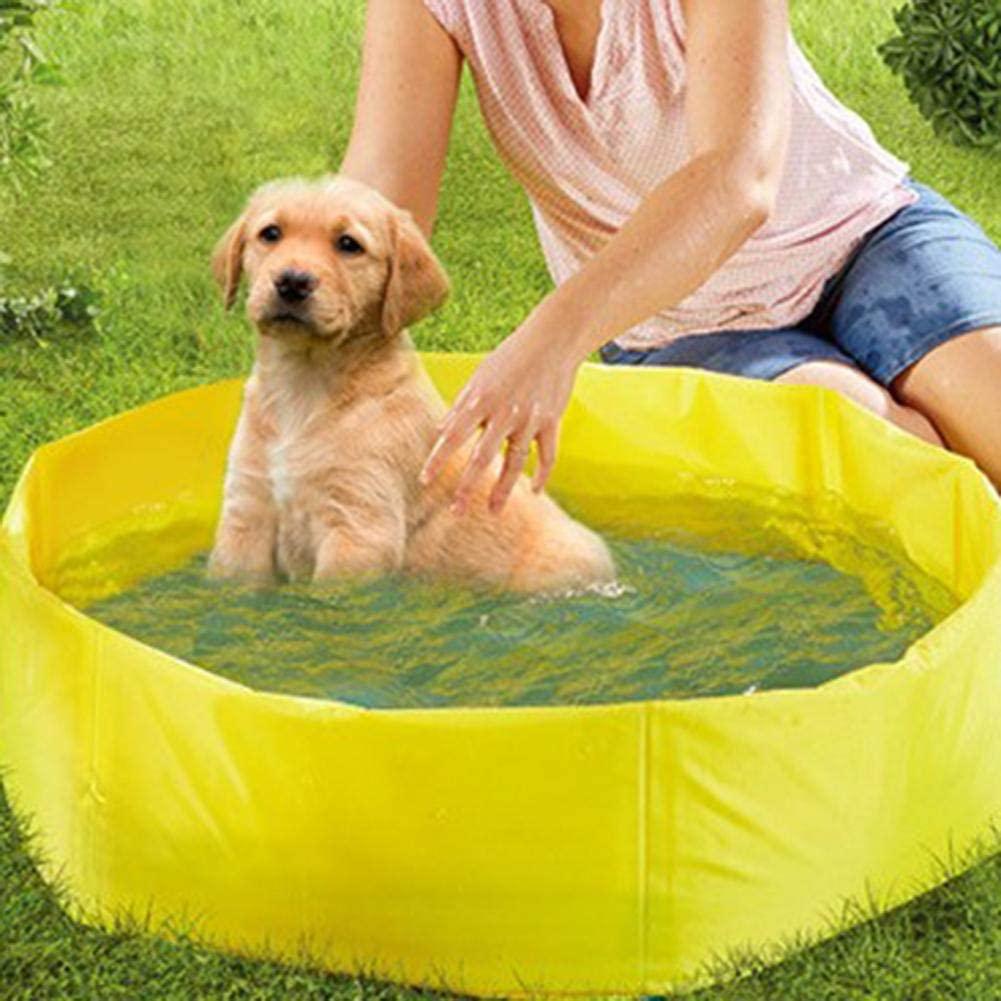 Dog paddling pool: Pidsen Swimming Pool Dog Bath review