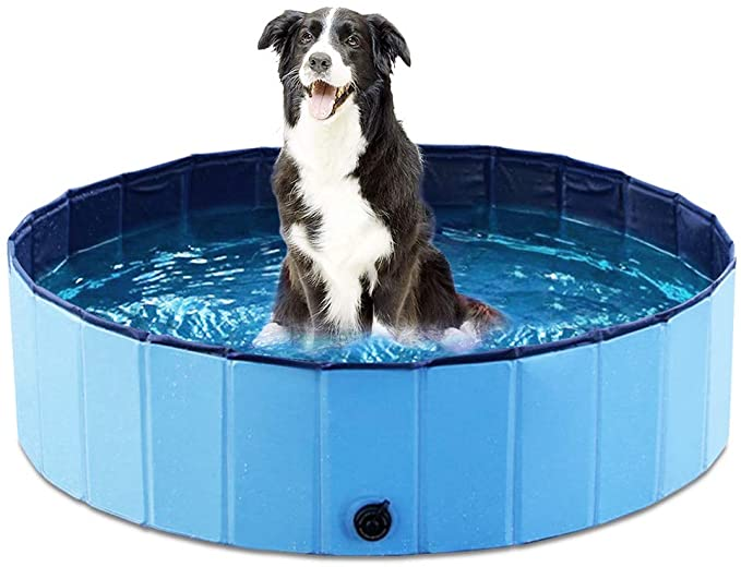 Trixie Dog Pool review