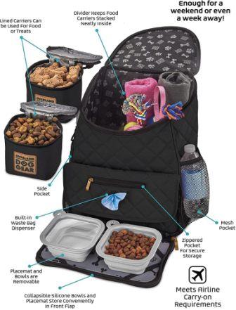 Overland Dog backpack for travelling