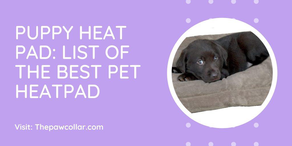 Puppy heat pad